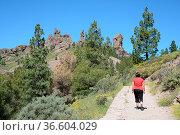 Roque nublo, Berg ,Gran Canaria, fels, felsen, kanaren, kanarische... Стоковое фото, фотограф Zoonar.com/Volker Rauch / easy Fotostock / Фотобанк Лори