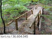 Holzbrücke, brücke, steg, weg, bach, herbst, herbstlich, mittelgebirge... Стоковое фото, фотограф Zoonar.com/Volker Rauch / easy Fotostock / Фотобанк Лори