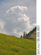 Gewitterwolke,wolke, gewitter,wetter,klima, meteorologie, alpen, berge... Стоковое фото, фотограф Zoonar.com/Volker Rauch / easy Fotostock / Фотобанк Лори