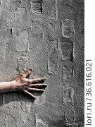 Hand an einer Mauer. Стоковое фото, фотограф Zoonar.com/Karl Heinz Spremberg / easy Fotostock / Фотобанк Лори
