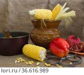 Початки зрелой кукурузы. Стоковое фото, фотограф Евгений Будюкин / Фотобанк Лори