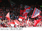 Fan, Fanblock, Ultras, Corrillos, Zuschauer, SC freiburg, Nordtribüne... Стоковое фото, фотограф Zoonar.com/Joachim Hahne / age Fotostock / Фотобанк Лори