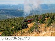 Eine Dampflok der Brockenbahn kurz unter dem Gipfel des Brockens. Стоковое фото, фотограф Zoonar.com/Martina Berg / easy Fotostock / Фотобанк Лори