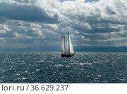 Segelboot, Bodensee, Стоковое фото, фотограф Zoonar.com/Manfred Ruckszio / age Fotostock / Фотобанк Лори