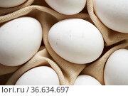 Close-up of eggs on a dishcloth. Стоковое фото, фотограф Pedro Salaverría / easy Fotostock / Фотобанк Лори