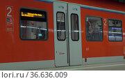 Closing automatic doors of subway train in Frankfurt (2016 год). Редакционное фото, фотограф Данил Руденко / Фотобанк Лори
