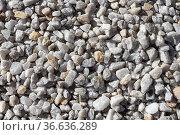 Beautiful texture of transparent white quartz crystal rough stones. Natural stones and minerals. Стоковое фото, фотограф Татьяна Куклина / Фотобанк Лори