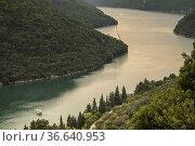 Lim canal, Limski Kanal, Istrian peninsula, Croatia, Europe. Стоковое фото, фотограф Tolo Balaguer / easy Fotostock / Фотобанк Лори