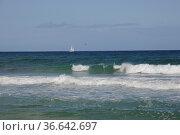 Segelboot, segeln,strand, sandstrand, segelschiff, boot, schiff, Sandstrand... Стоковое фото, фотограф Zoonar.com/Volker Rauch / easy Fotostock / Фотобанк Лори