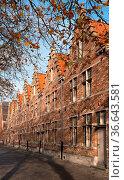 Historic buildings of Bruges, Belgium. Стоковое фото, фотограф Zoonar.com/Alexander Ludwig / easy Fotostock / Фотобанк Лори