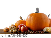 Autumn harvest on wooden table. Стоковое фото, фотограф Иван Михайлов / Фотобанк Лори