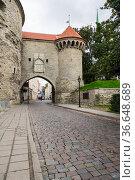 Street of old Tallinn (2019 год). Стоковое фото, фотограф Юлия Белоусова / Фотобанк Лори