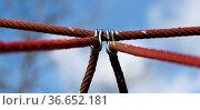 Seile an einem Klettergerüst, Berlin, Deutschland. Стоковое фото, фотограф Zoonar.com/Karl Heinz Spremberg / easy Fotostock / Фотобанк Лори