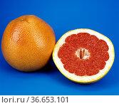 Grapefruit, Citrus, Blut-Grapefruit, Exotische Frucht, exotisch, ... Стоковое фото, фотограф Zoonar.com/Manfred Ruckszio / age Fotostock / Фотобанк Лори
