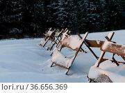 Schneefangzaun aus Holz. Стоковое фото, фотограф Zoonar.com/Daniel Kühne / age Fotostock / Фотобанк Лори