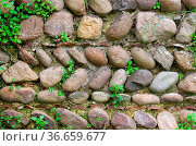 Natursteinmauer - natural stone wall 02. Стоковое фото, фотограф Zoonar.com/LIANEM / easy Fotostock / Фотобанк Лори