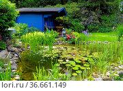 Gartenteich, blaues Gartenhaus, Seerosenteich. Стоковое фото, фотограф Zoonar.com/Bildagentur Geduldig / easy Fotostock / Фотобанк Лори