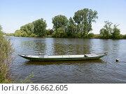 Boot ,Main,Seligenstadt, nachen, kahn, fluss, landschaft, transport... Стоковое фото, фотограф Zoonar.com/Volker Rauch / easy Fotostock / Фотобанк Лори