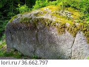 Schwarzwald, Baden-Württemberg, Triberg, Scheffelstein, Wald mit großem... Стоковое фото, фотограф Zoonar.com/Bildagentur Geduldig / easy Fotostock / Фотобанк Лори