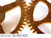 Zahnrad. Стоковое фото, фотограф Zoonar.com/Rüdiger Rebmann / easy Fotostock / Фотобанк Лори
