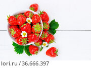 Stuttgart, Deutschland - 4. Juni 2021: Erdbeeren Beeren Früchte Erdbeere... Стоковое фото, фотограф Zoonar.com/Markus Mainka / easy Fotostock / Фотобанк Лори