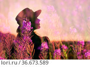 Woman in hat silhouette on blooming Sally summer flower field. Стоковое фото, фотограф Zoonar.com/Max / easy Fotostock / Фотобанк Лори