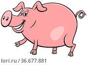 Cartoon Illustration of Happy Pig Comic Farm Animal Character. Стоковое фото, фотограф Zoonar.com/Igor Zakowski / easy Fotostock / Фотобанк Лори