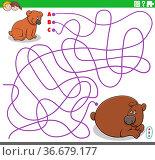 Cartoon illustration of lines maze puzzle game with baby bear animal... Стоковое фото, фотограф Zoonar.com/Igor Zakowski / easy Fotostock / Фотобанк Лори