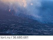 Smoke-filled sky and lava flow, Cumbre Vieja Volcano, La Palma, Canary... Стоковое фото, фотограф Eduardo Blanco / Nature Picture Library / Фотобанк Лори