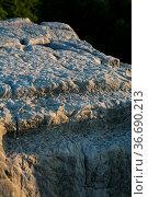 Struktur der oberen Kante von Felsen I der Externsteine mit einigen... Стоковое фото, фотограф Zoonar.com/Martina Berg / easy Fotostock / Фотобанк Лори