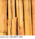 Square food background - several sticks of alba premium ceylon cinnamon... Стоковое фото, фотограф Zoonar.com/Valery Voennyy / easy Fotostock / Фотобанк Лори