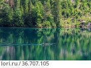 View of the Obersee Lake behind the Watzmann massif, Salet at Koenigssee... Стоковое фото, фотограф Zoonar.com/Rudolf Ernst / easy Fotostock / Фотобанк Лори
