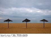 Sandstrand und 3 Sonnenschirme mit stark bewoelktem Himmel. Стоковое фото, фотограф Zoonar.com/Atlantismedia / easy Fotostock / Фотобанк Лори