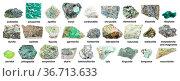 Set of various green rough stones with names (labradorite, chrysotile... Стоковое фото, фотограф Zoonar.com/Valery Voennyy / easy Fotostock / Фотобанк Лори