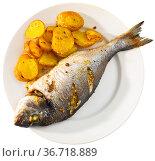 Baked dorado with potatoes on plate. Стоковое фото, фотограф Яков Филимонов / Фотобанк Лори