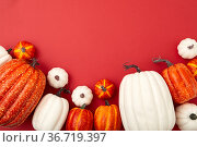 Different sizes of white and orange flatlay. Стоковое фото, фотограф Ekaterina Demidova / Фотобанк Лори