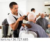 Barber using electric trimmer. Стоковое фото, фотограф Яков Филимонов / Фотобанк Лори
