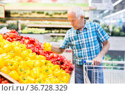 Mature senor examines bell pepper in vegetables section of supermarket. Стоковое фото, фотограф Татьяна Яцевич / Фотобанк Лори