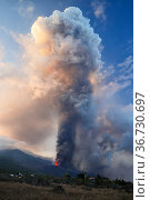 Strombolian eruption of Cumbre Vieja volcano, La Palma, Canary Islands... Редакционное фото, фотограф Oriol  Alamany / Nature Picture Library / Фотобанк Лори