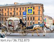 Красивая карета на улице Санкт-Петербурга. Редакционное фото, фотограф E. O. / Фотобанк Лори