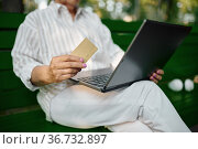 Dranny using laptop on the bench in summer park. Стоковое фото, фотограф Tryapitsyn Sergiy / Фотобанк Лори