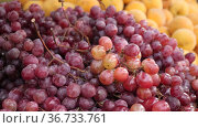 Bunches of ripe organic red grape for sale in the product store. Стоковое видео, видеограф Яков Филимонов / Фотобанк Лори