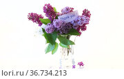 Bouquet of different blooming spring lilacs in a vase on white background. Стоковое видео, видеограф Peredniankina / Фотобанк Лори
