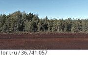 Peat harvest field aerial view. Стоковое видео, видеограф Ints VIkmanis / Фотобанк Лори