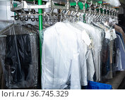 Clean packed clothes hang on hangers in laundry. Стоковое фото, фотограф Яков Филимонов / Фотобанк Лори