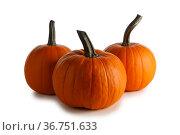 Three orange pumpkins on white. Стоковое фото, фотограф Иван Михайлов / Фотобанк Лори