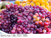 Bunches of red grapes in grocery store window. Стоковое фото, фотограф Яков Филимонов / Фотобанк Лори