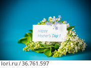 bouquet of white lilacs with greeting card. Стоковое фото, фотограф Peredniankina / Фотобанк Лори