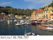 Italien, Italia, Ligurien, Riviera di Levante, Portofino, Bootshafen, Стоковое фото, фотограф Zoonar.com/Bildagentur Geduldig / easy Fotostock / Фотобанк Лори