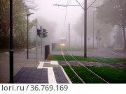 Eine Straßenbahn und Autos morgens im Nebel. Стоковое фото, фотограф Zoonar.com/Bastian Kienitz / easy Fotostock / Фотобанк Лори